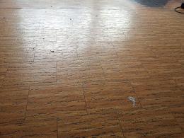 Floor Flex Abedos Gmbh